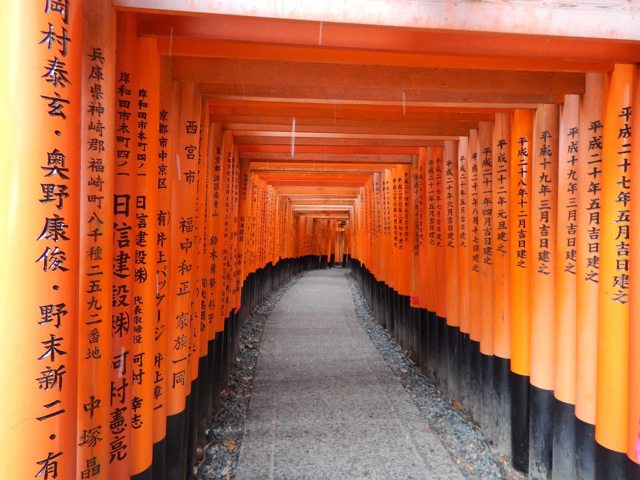 Fushimi-Inari Temple - kyoto -japon