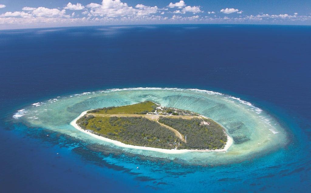 Lady Elliot Island -grande barrière de corail -Australie