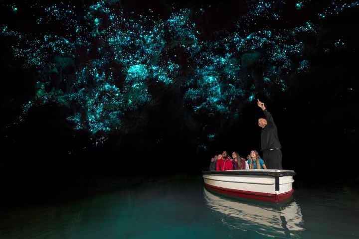Waitomo-Glowworm-Caves-nouvelle zelande