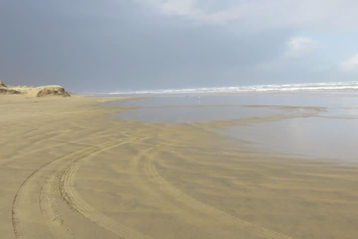 90 mile beach - nouvelle-zelande