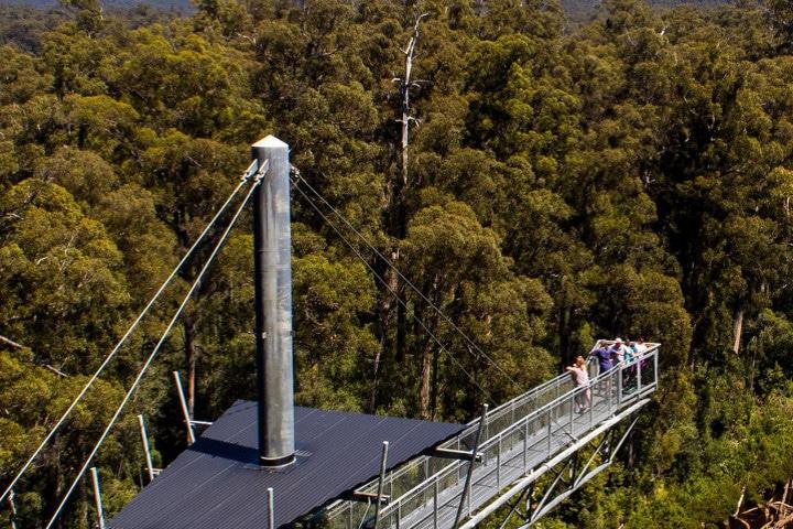 Tahune Airwalk Lodge - auberges de jeunesse insolites en Australie