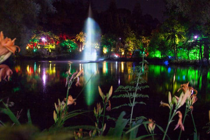 Pukekura-park-new-plymouth-festival-des-lumieres
